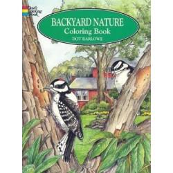 Backyard Nature Colouring Book