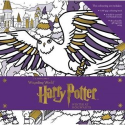 Harry Potter: Winter at Hogwarts: A Magical Colouring Set