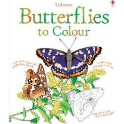 Butterflies Colouring Book